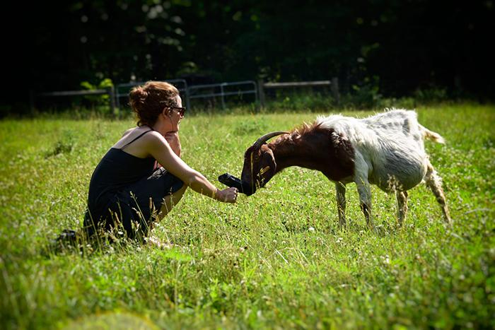 Merche-&-goatweb